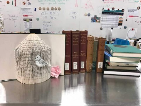 Withdrawn Book Art